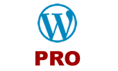 Wordpress Professional Paket
